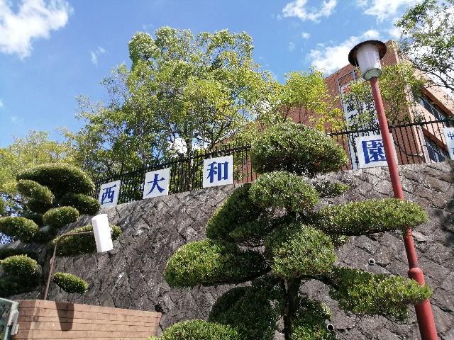 f:id:yuyu-yurayura:20190907190050j:image
