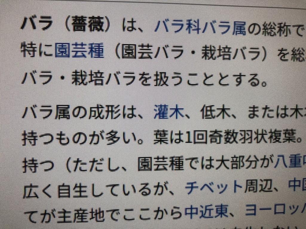 f:id:yuyubu:20181213002545j:plain