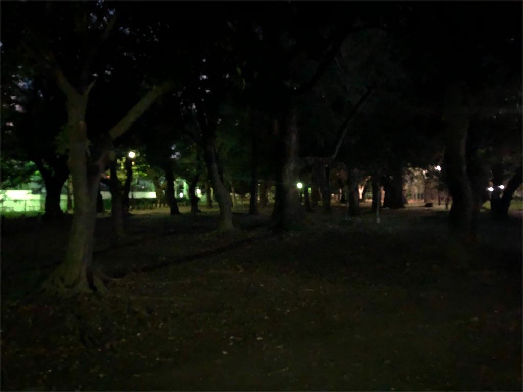 f:id:yuyubu:20191006112442j:plain
