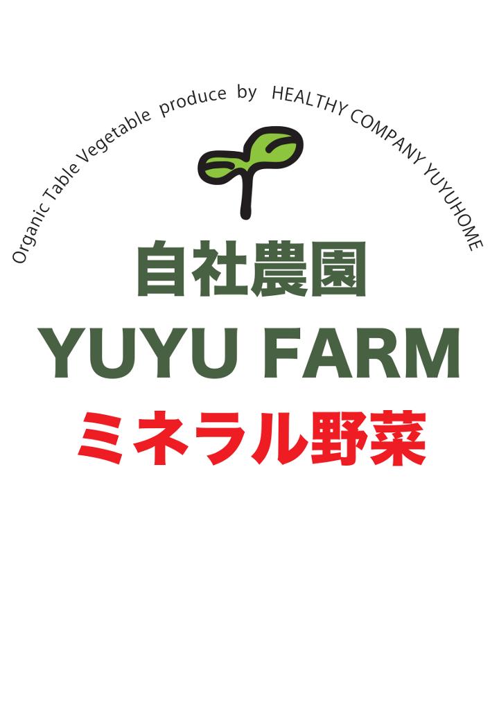 f:id:yuyuhome:20170717112116j:plain