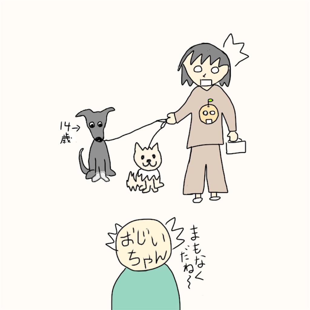 f:id:yuyukan0:20200424110445p:image