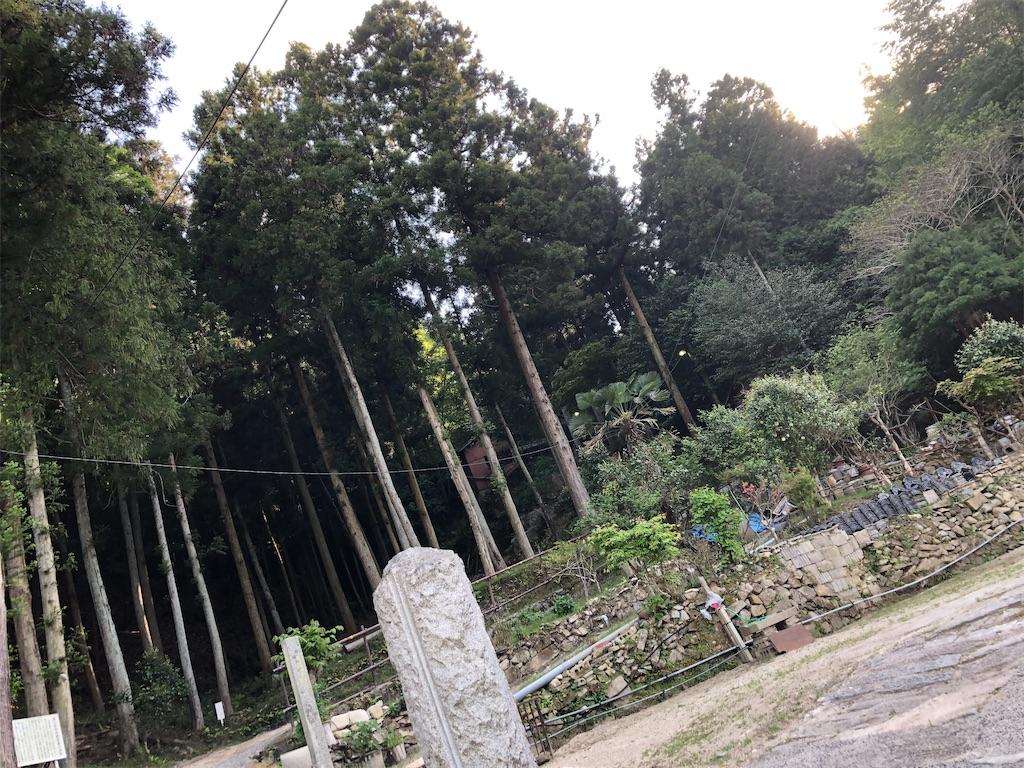 f:id:yuyutata0511:20200515215018j:image