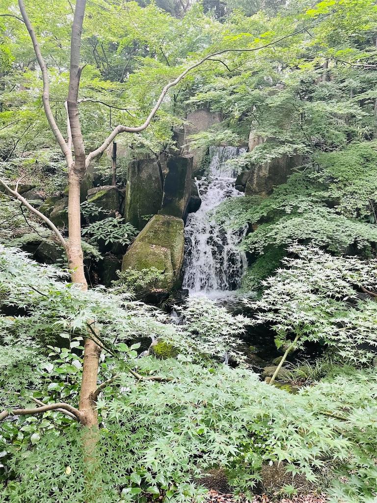 f:id:yuyuto_1:20210722102927j:image
