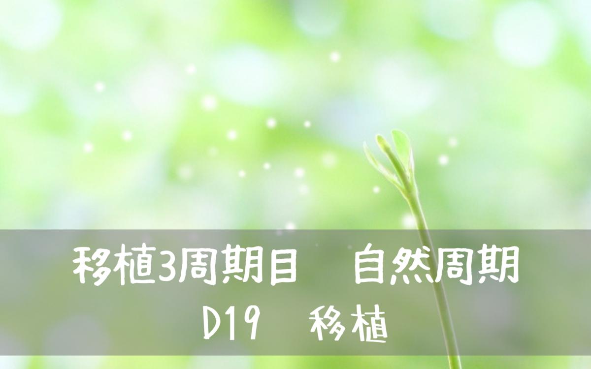 f:id:yuyuyunana:20191021115941p:plain