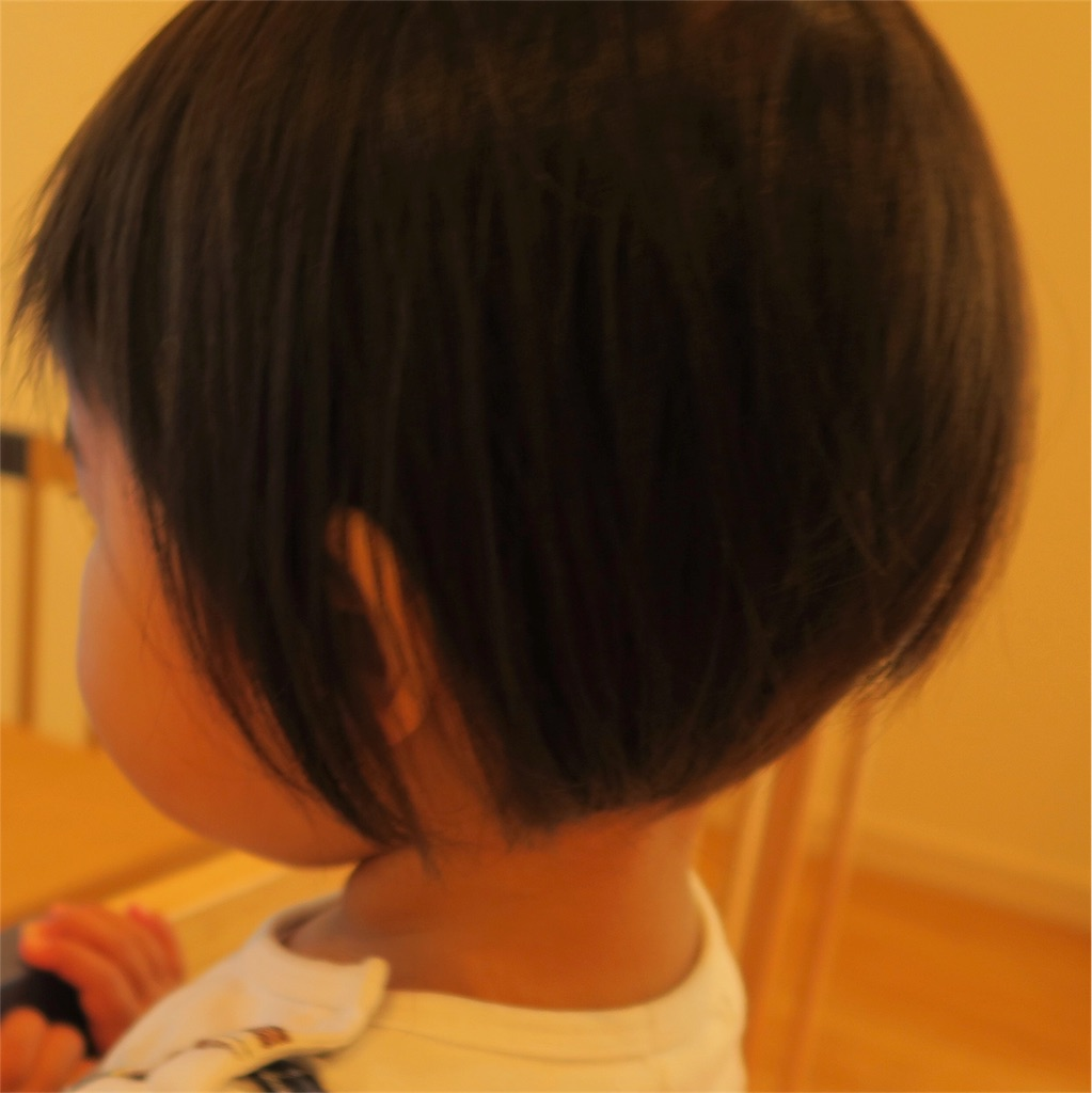 f:id:yuyuyunozi:20180409124710j:image