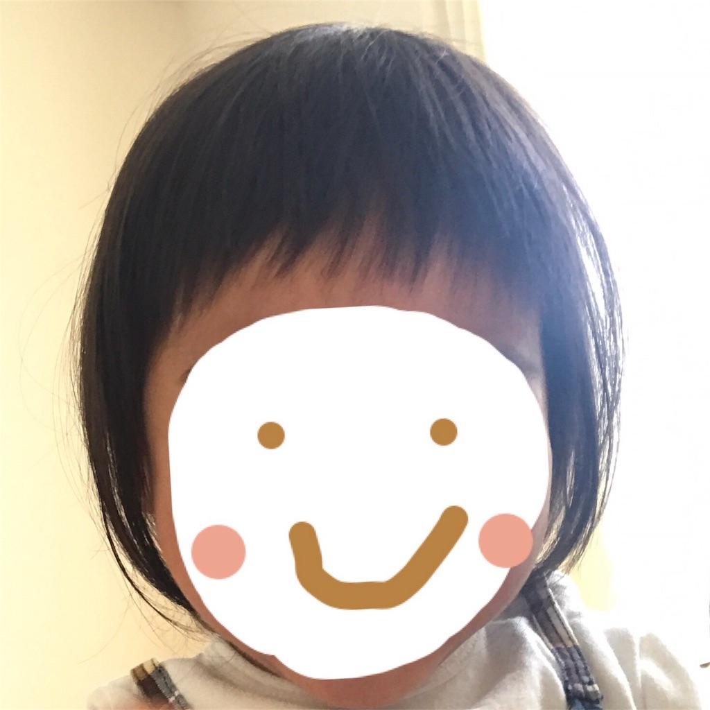 f:id:yuyuyunozi:20180409192902j:image