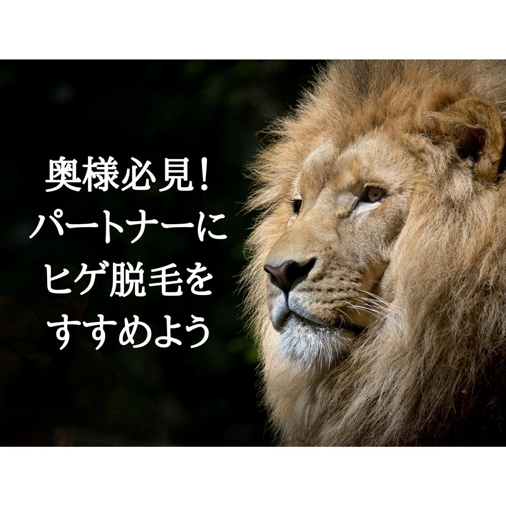 f:id:yuyuyunozi:20180711202949p:plain