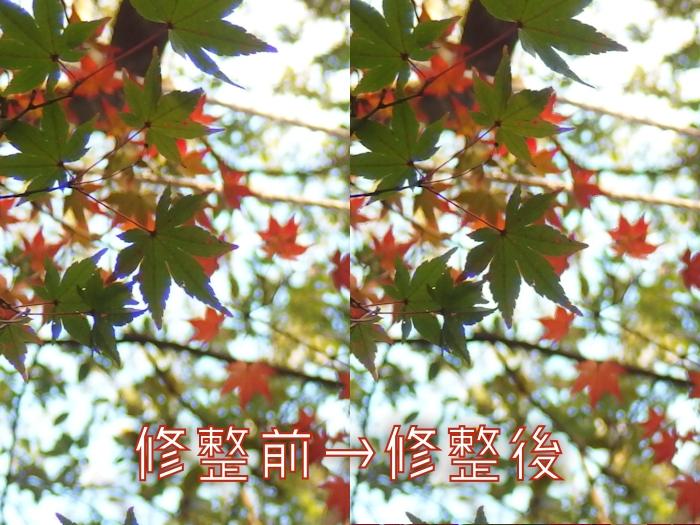 f:id:yuzu-blo:20171204135500j:plain