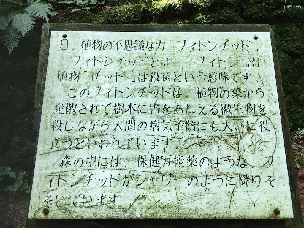 f:id:yuzu-pepper:20200627233643j:plain