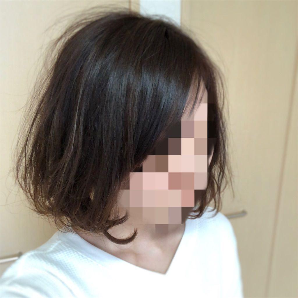 f:id:yuzu62:20180417161606j:image