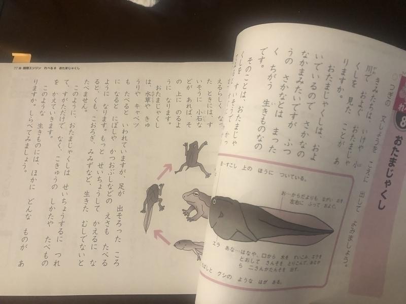 f:id:yuzu_0306:20200528074458j:plain