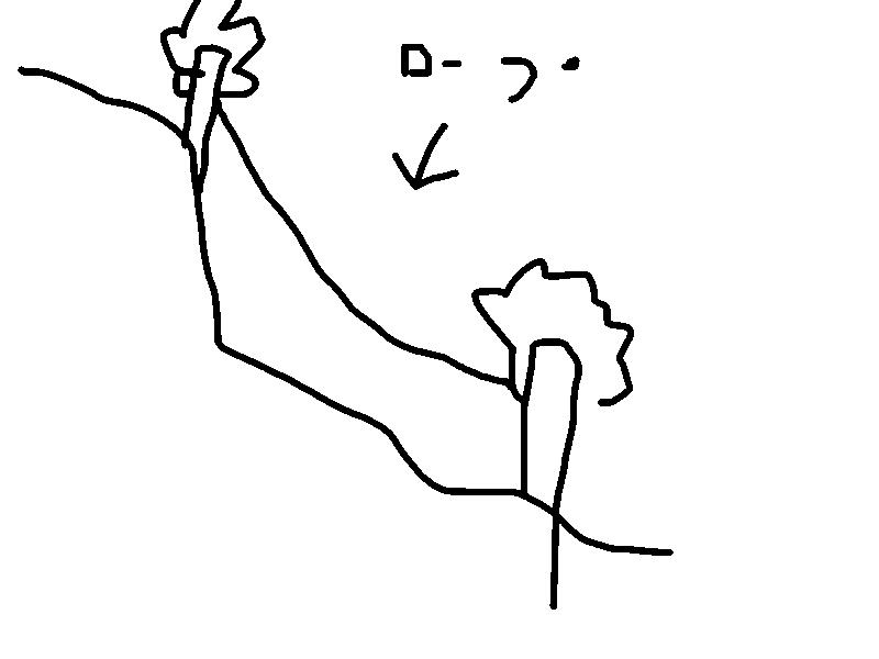f:id:yuzubaferret:20170503150511p:plain