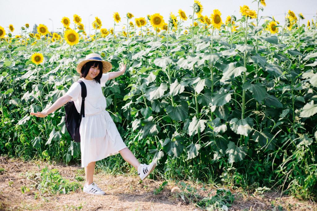 f:id:yuzubaferret:20170609220154j:plain
