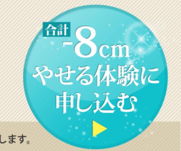 f:id:yuzubaferret:20170705181512p:plain