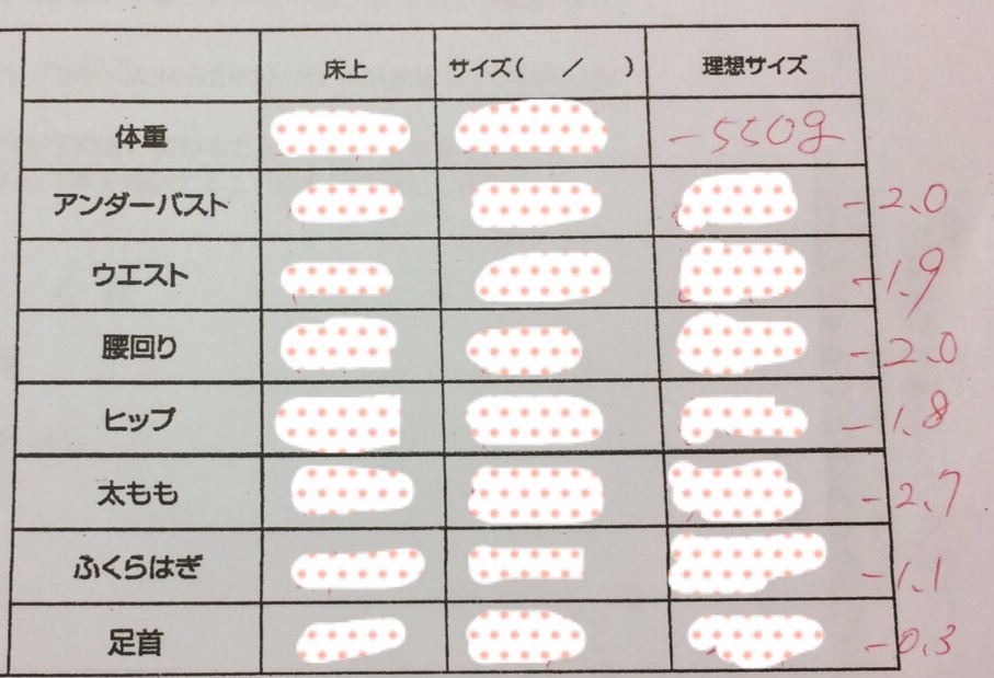 f:id:yuzubaferret:20170801160846j:plain