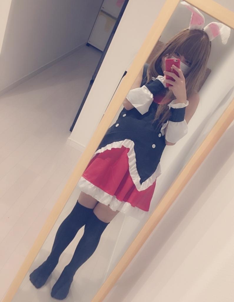 f:id:yuzubaferret:20170902170611j:plain