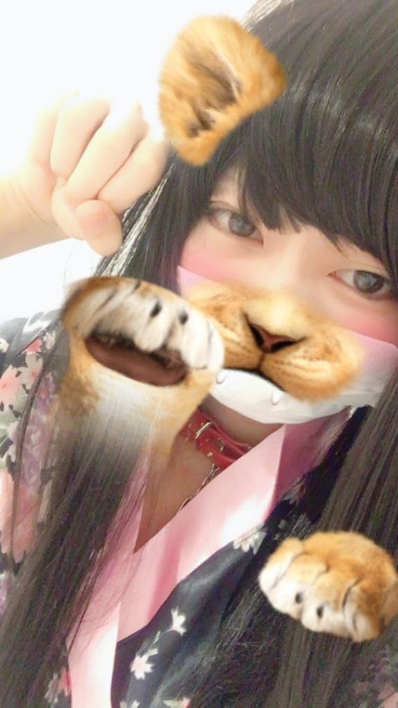 f:id:yuzubaferret:20171102154853j:plain