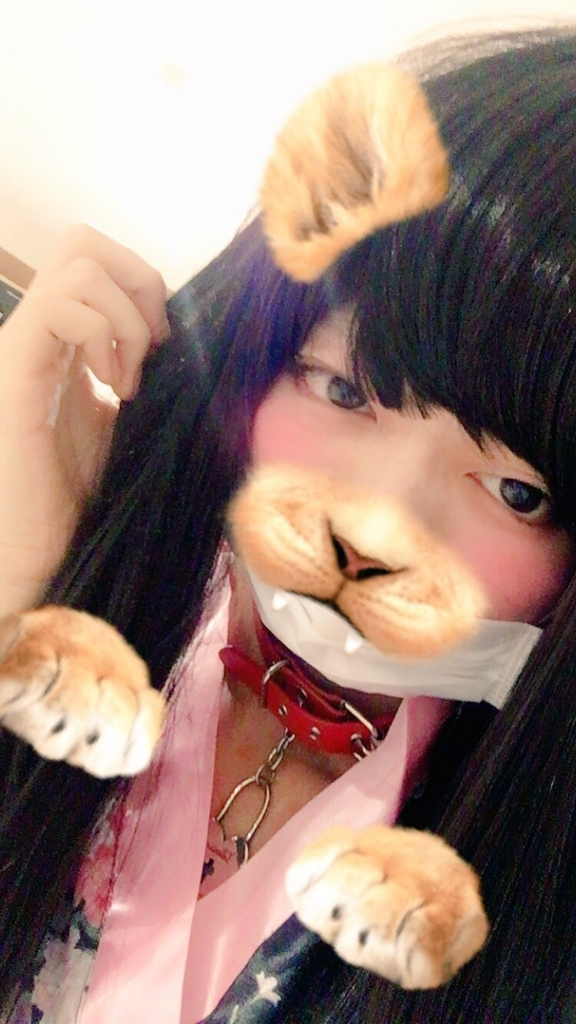 f:id:yuzubaferret:20171106231139j:plain