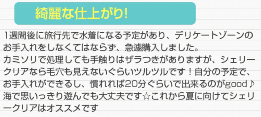 f:id:yuzubaferret:20171124010802p:plain