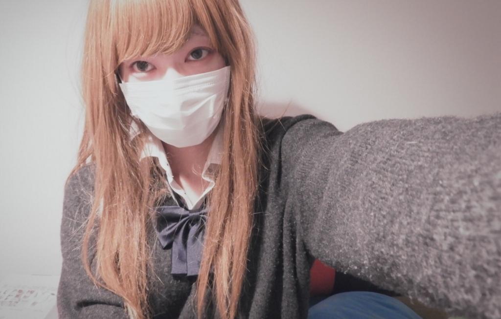 f:id:yuzubaferret:20171129165209j:plain