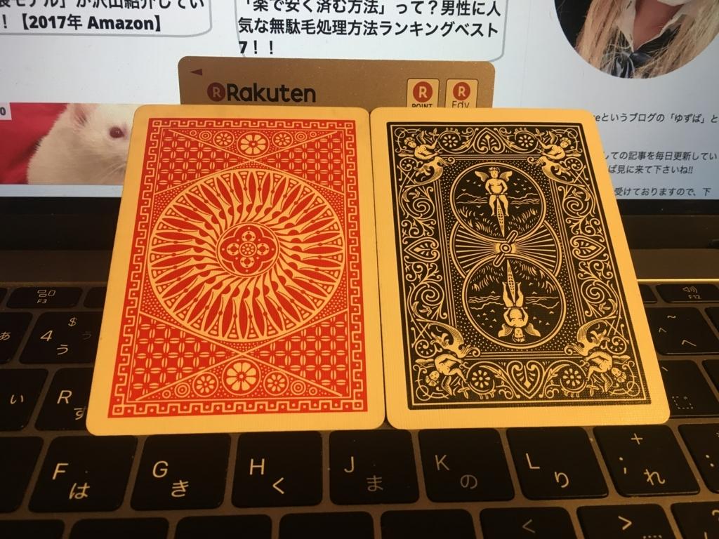 f:id:yuzubaferret:20171203172000j:plain