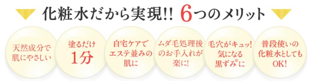 f:id:yuzubaferret:20171206175347p:plain