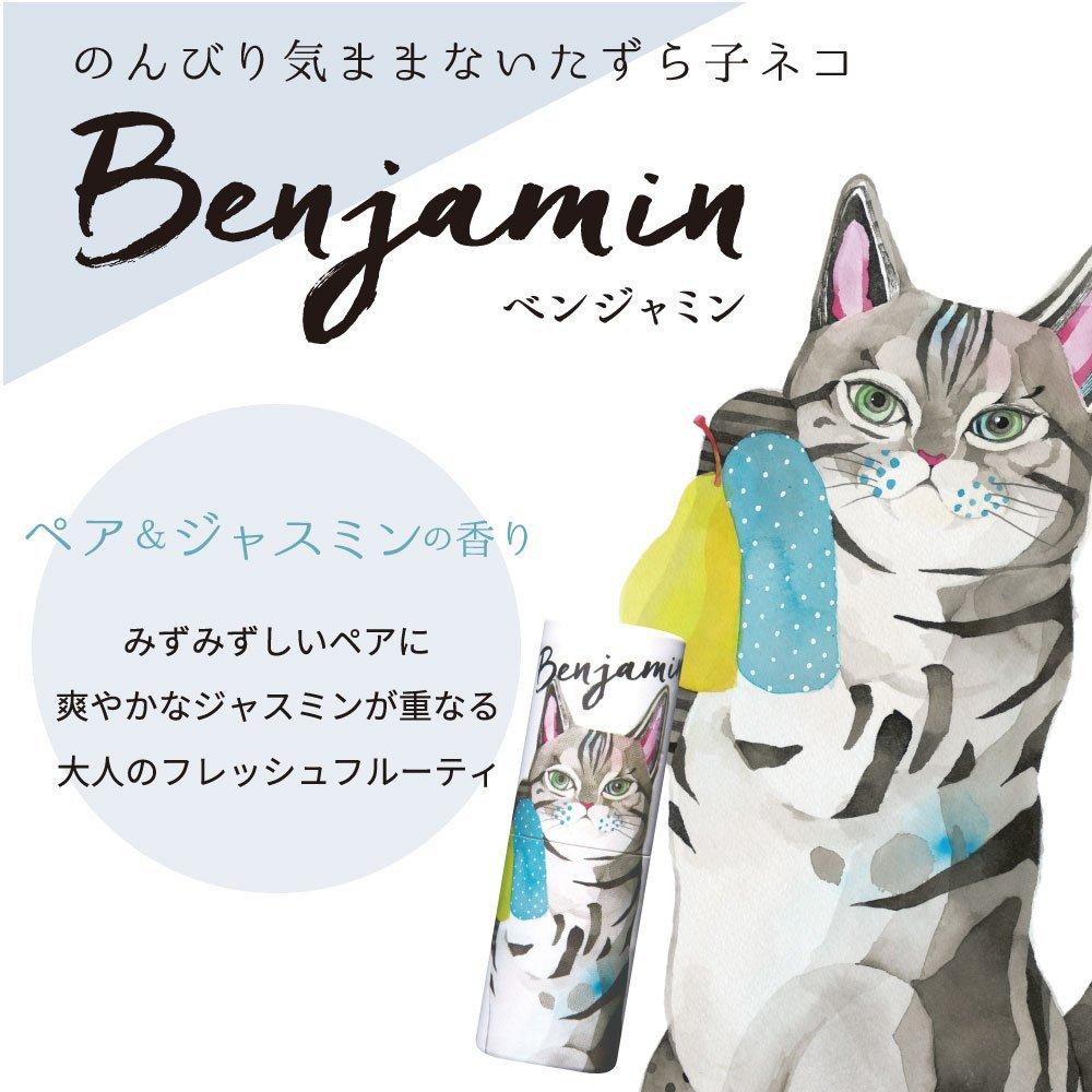 f:id:yuzubaferret:20171223212404j:plain