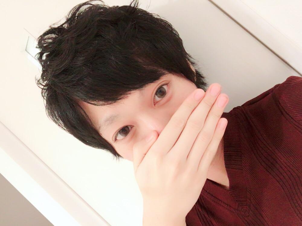 f:id:yuzubaferret:20171226160611j:plain