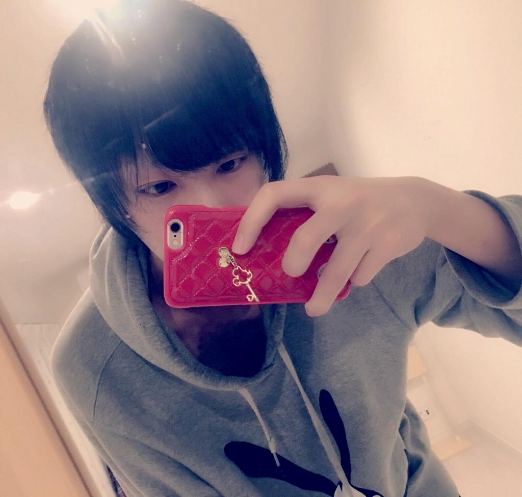 f:id:yuzubaferret:20171226211441j:plain