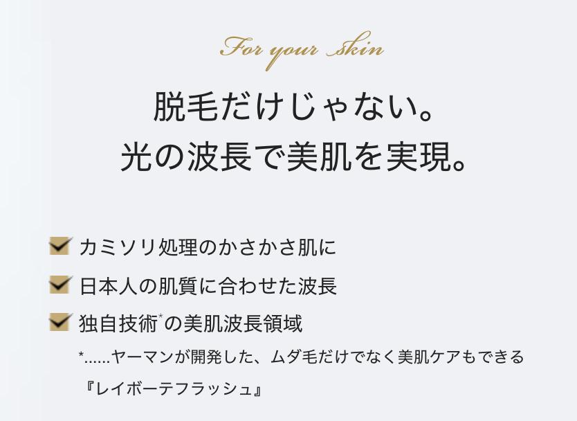 f:id:yuzubaferret:20180109171806p:plain