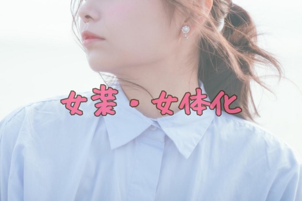 f:id:yuzubaferret:20180113173533j:plain
