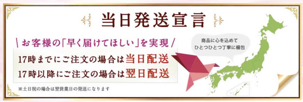 f:id:yuzubaferret:20180131234751p:plain
