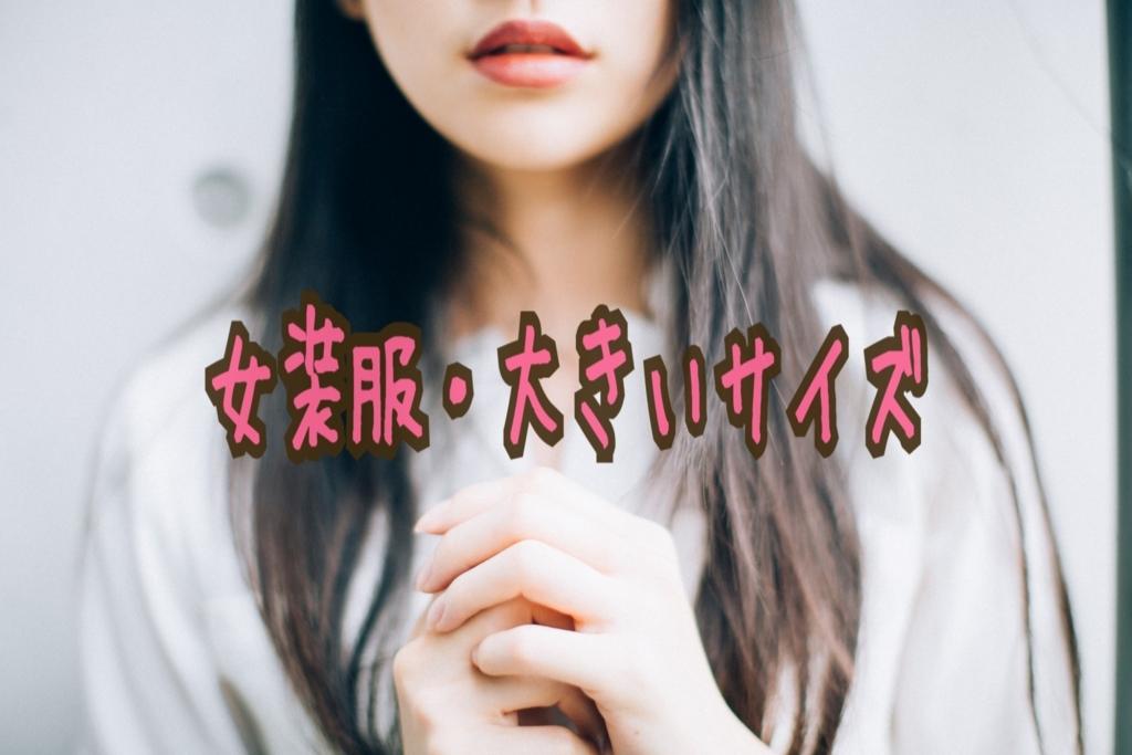 f:id:yuzubaferret:20180220174433j:plain