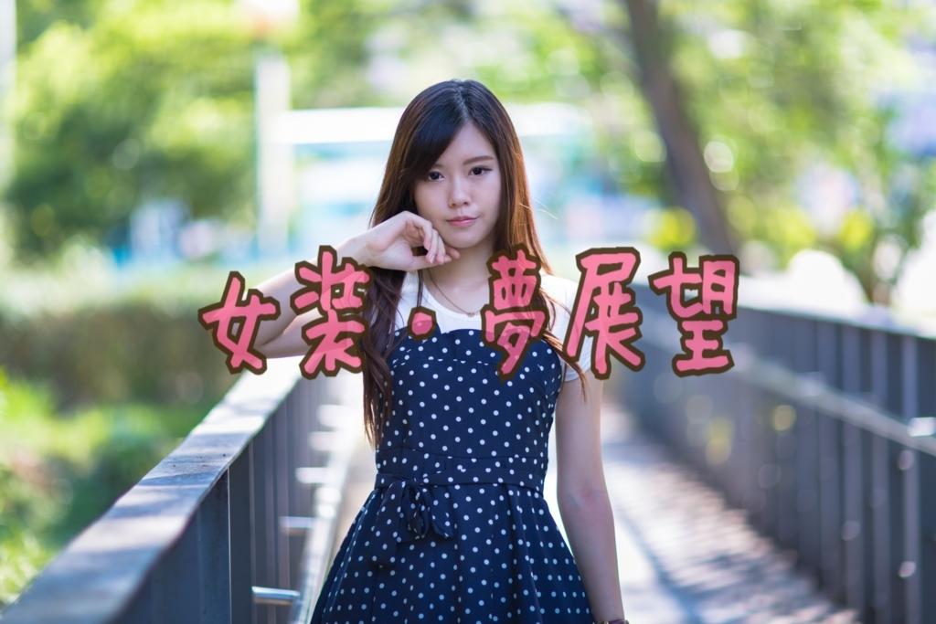 f:id:yuzubaferret:20180227152158j:plain