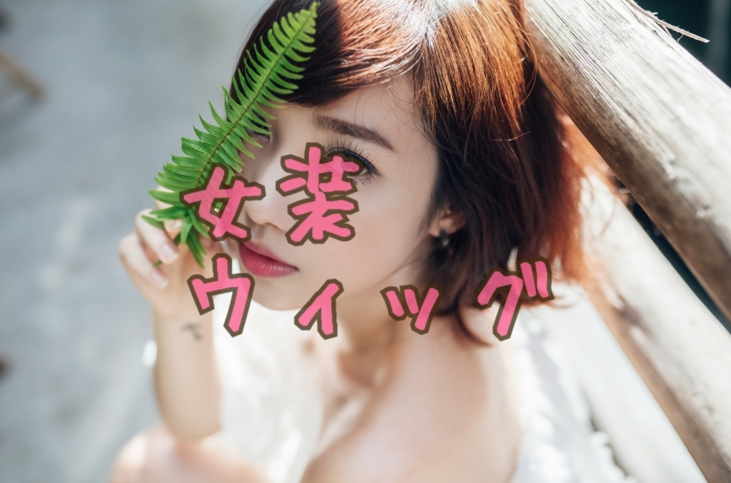 f:id:yuzubaferret:20180305131845j:plain
