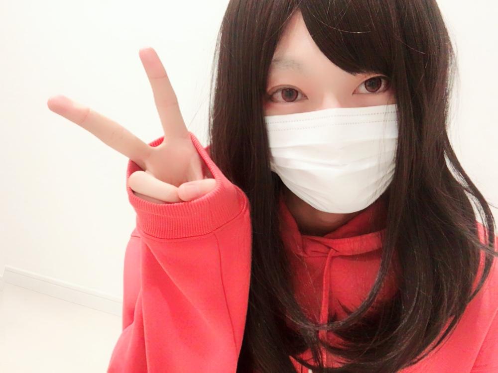 f:id:yuzubaferret:20180305142357j:plain