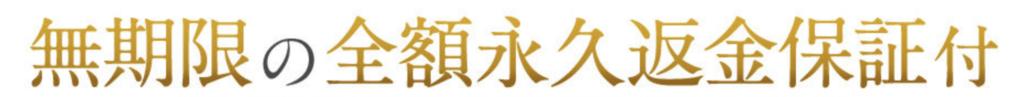 f:id:yuzubaferret:20180307210133p:plain
