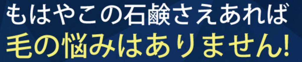 f:id:yuzubaferret:20180310140134p:plain