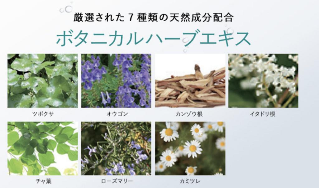 f:id:yuzubaferret:20180310205319p:plain
