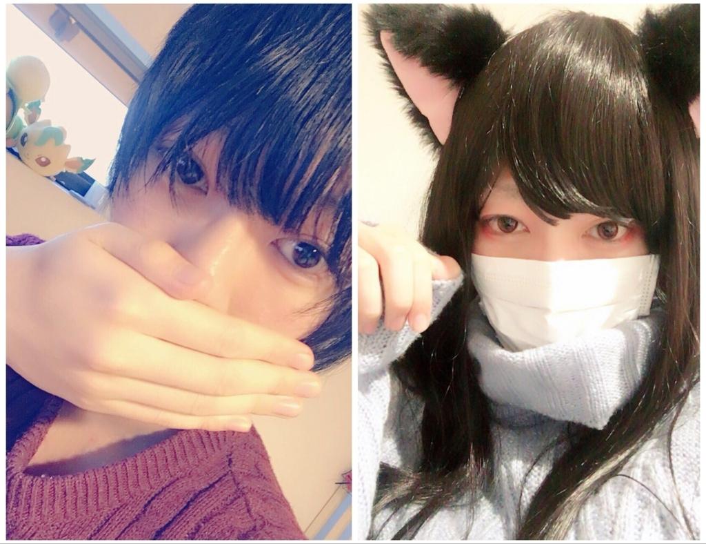 f:id:yuzubaferret:20180317165032j:plain