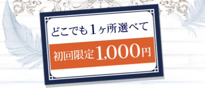 f:id:yuzubaferret:20180327212114p:plain