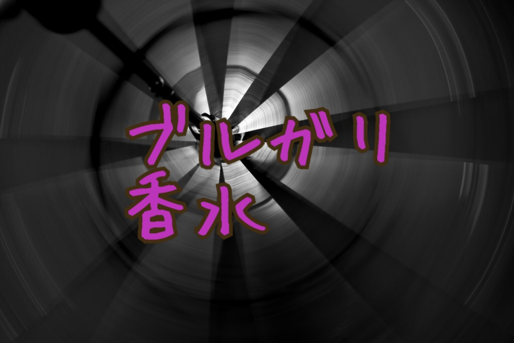 f:id:yuzubaferret:20180330182029j:plain