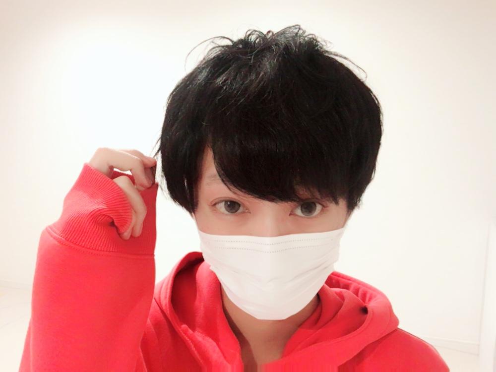 f:id:yuzubaferret:20180405215016j:plain