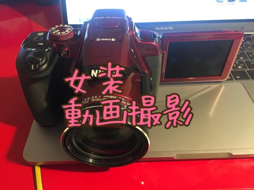 f:id:yuzubaferret:20180411172521j:plain