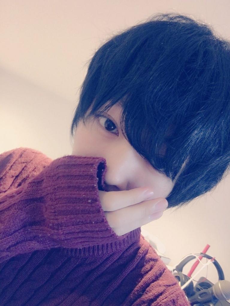 f:id:yuzubaferret:20180616171223j:plain