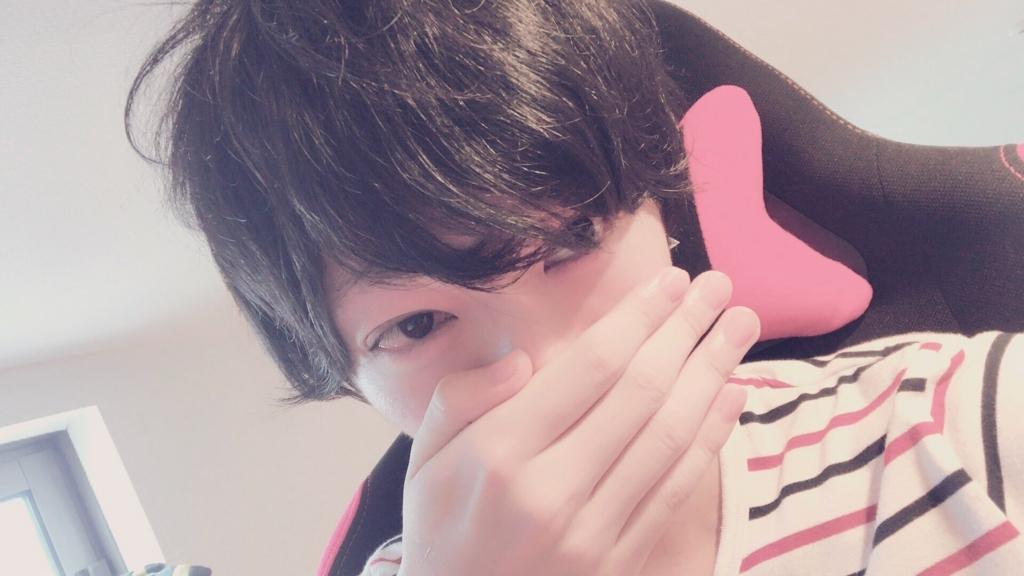 f:id:yuzubaferret:20180816174618j:plain
