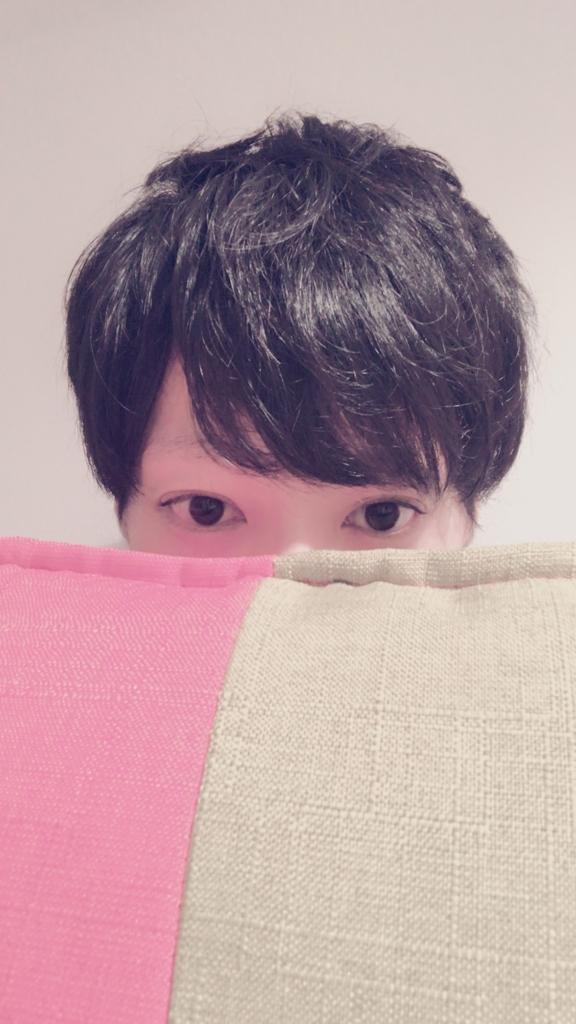 f:id:yuzubaferret:20180816174634j:plain