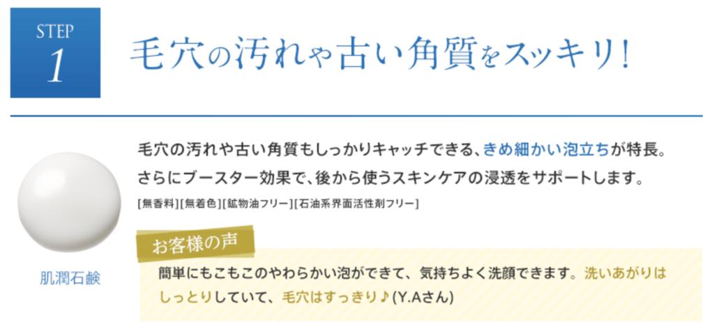 f:id:yuzubaferret:20180913162417p:plain