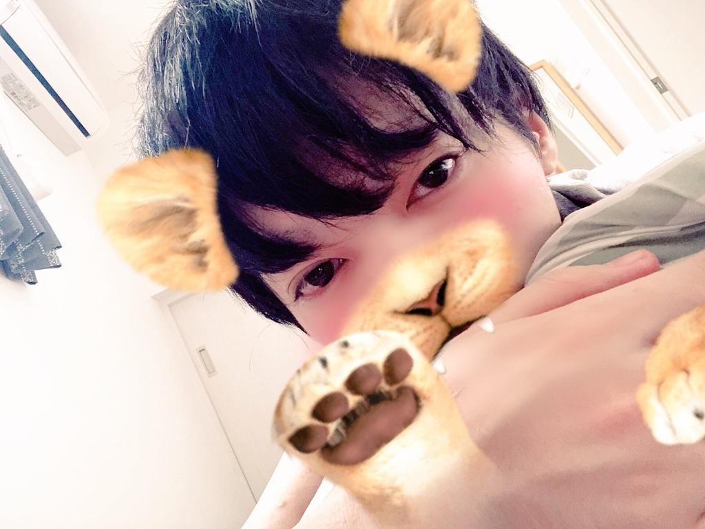 f:id:yuzubaferret:20180913164445j:plain