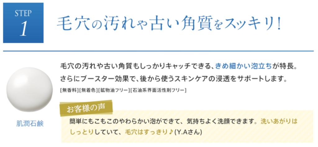 f:id:yuzubaferret:20181004234602p:plain